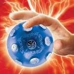 Electric Shock Ball Game
